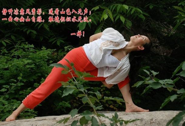 一禅瑜伽师的禅诗禅画图片
